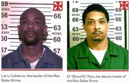 NYC's most dangerous gang, The Mac Baller Brims – 3%