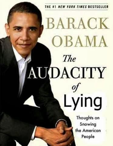 VOTE #1 Book cover