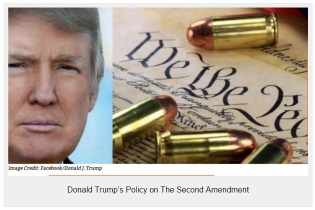 DonaldTrumpSecondAmendment-600x337