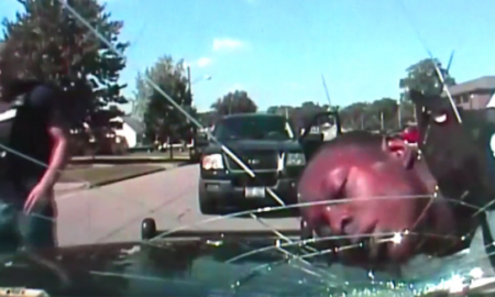 [VIDEO] Cop Shatters Windshield With Handcuffed Man's Face