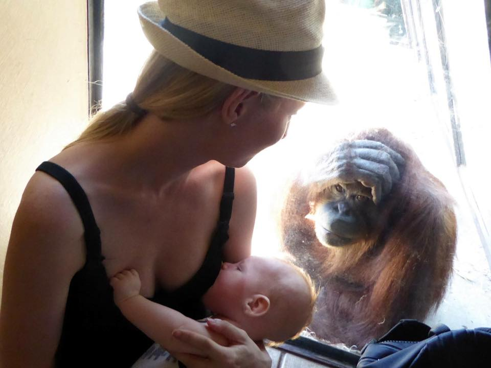 Breastfeeding Mom Tries To Be Private, Ends Up Going 'Ape'