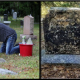 Photo of Andrew Lumish cleaning tombstones