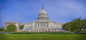 united-states-capitol-building-michael-greene
