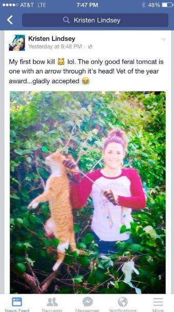 cat-killed-screen-grab