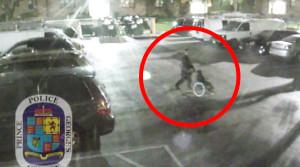 wheelchair thief