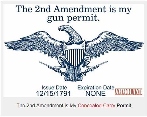 2nd-amendment-is-my-permit