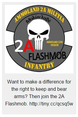 2A-Flashmob-Patch-225x225
