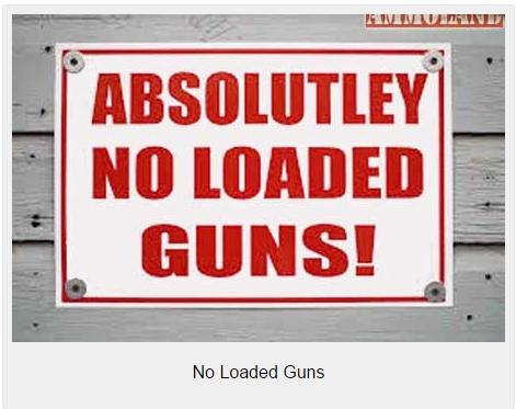 No-Loaded-Guns