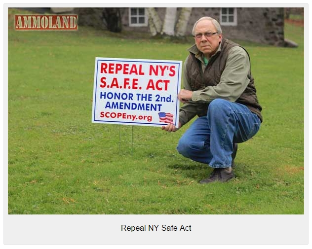 Repeal-NY-Safe-Act