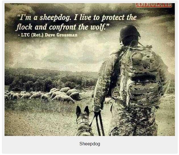Sheepdog-large
