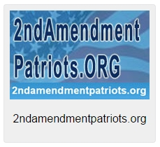 2ndamendmentpatriots-org-logo