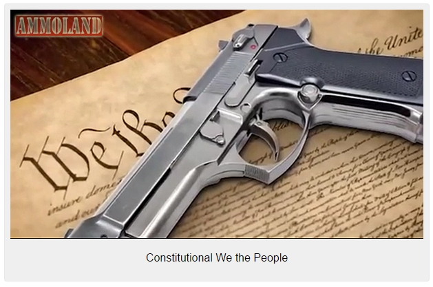 Constitutional-We-the-People-629x417