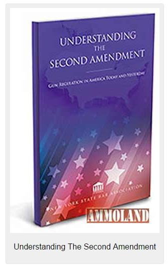 Understanding-The-Second-Amendment-337x536