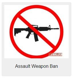 AR15-Gun-Ban-No-Guns-225x186