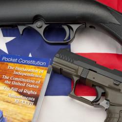 guns-and-guns-250x250