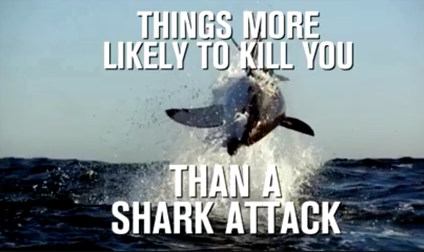 Things More Likely to Kill You Than a Shark (The Statistics Will Surprise You!)
