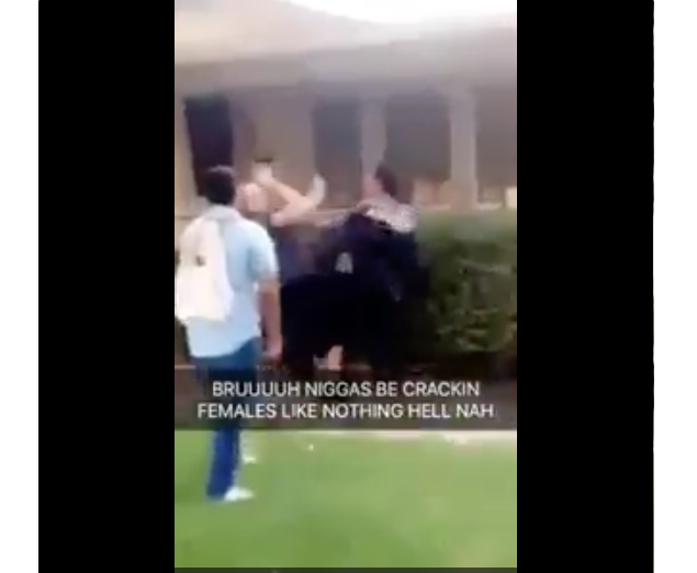 [WATCH] White Girl Beaten By Two Mexican Thugs Who Attempt To Steal The Trump Sign