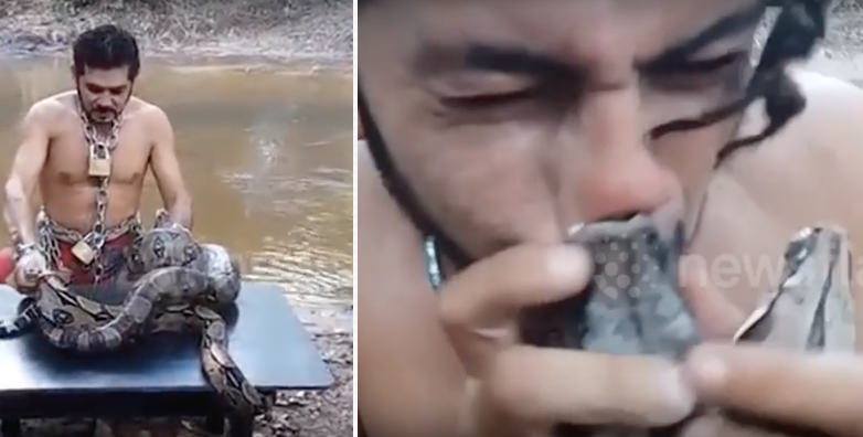 BRILLIANT: Protester Tries To Eat Live Tarantula OFF OF A GIANT SNAKE